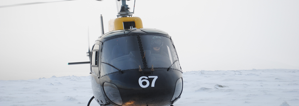 International Helicopter Solutions - training